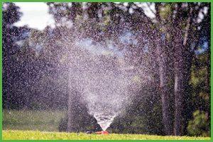 Sprinkler Lawn