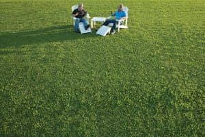 Tropical Turf Lawn Cairns Supplier