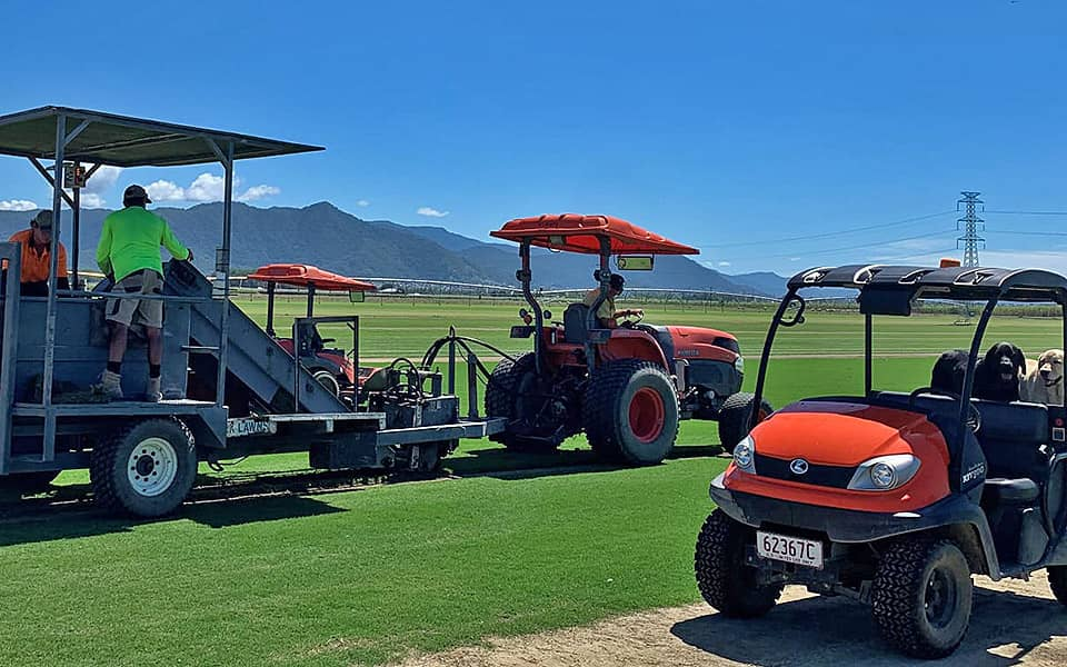 TifTuf Turf Lawn Cairns Supplier